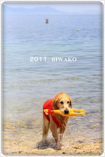 2011,6,29琵琶湖4