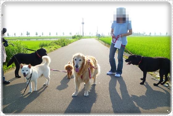 2011,7,5お散歩13