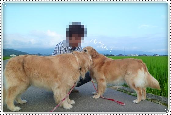 2011,7,30お散歩7