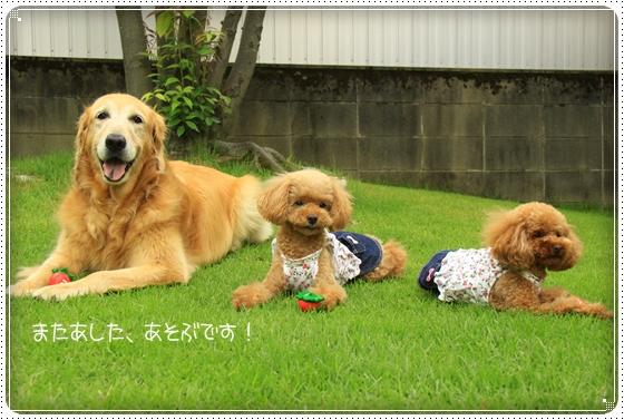 2011,8,1お庭遊び5