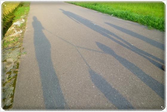 2011,8,28お散歩9