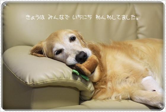 2011,9,4おやすみ1