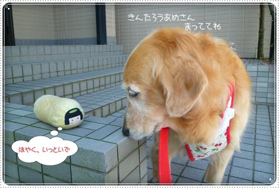 2011,9,28お散歩6