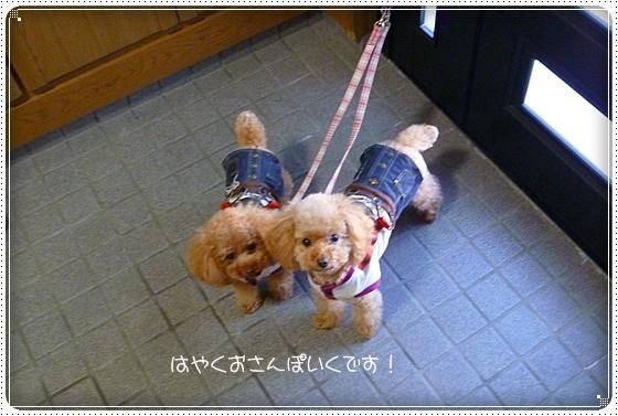 2011,9,28お散歩2