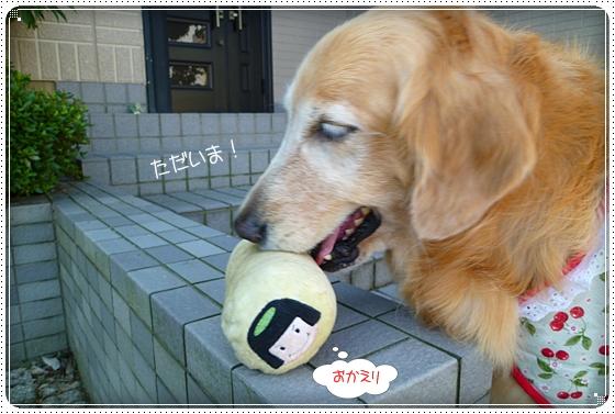 2011,9,28お散歩10