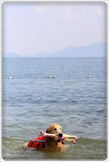 2011,9,29琵琶湖5