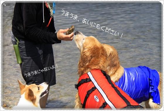 2011,9,30琵琶湖10