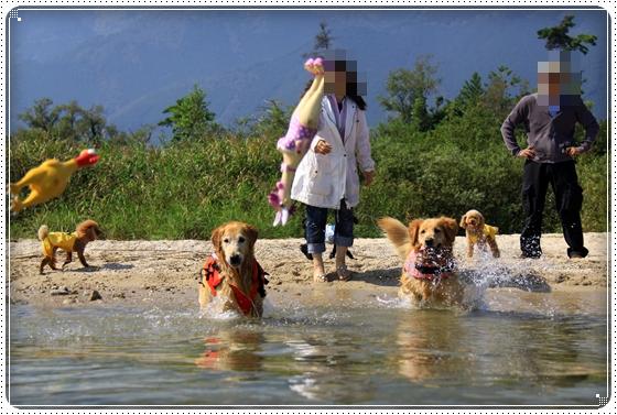 2011,10,9琵琶湖4