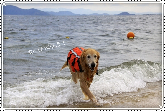 2011,10,27琵琶湖2
