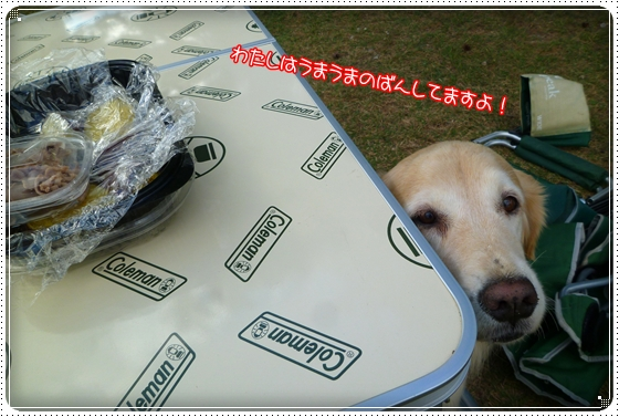 2011,10,27琵琶湖14