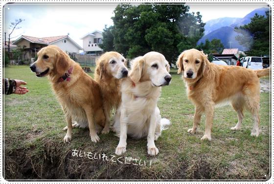 2011,10,27琵琶湖15