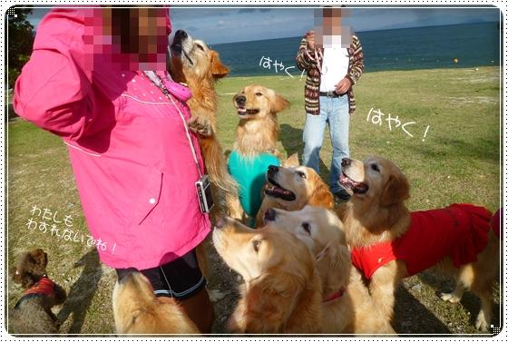 2011,10,28琵琶湖12