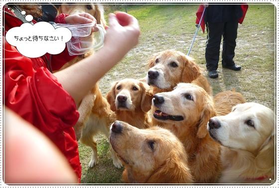 2011,10,28琵琶湖10
