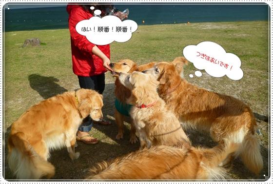 2011,10,28琵琶湖8