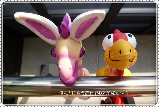 2011,10,28琵琶湖17