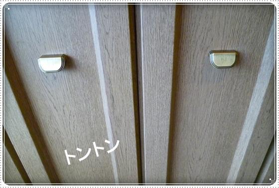 2011,11,3琵琶湖1