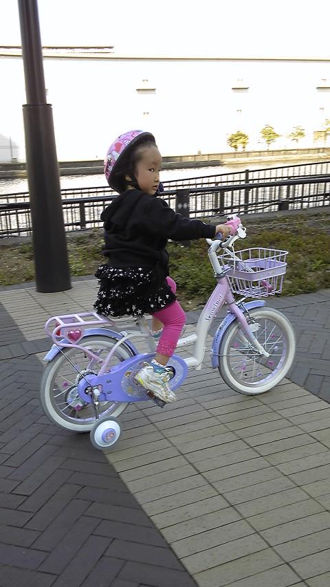 久足ぶりの自転車