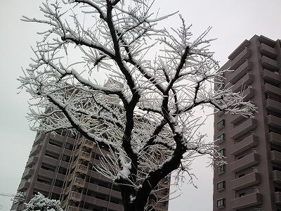 1003tokusenji04.jpg