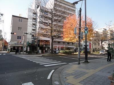 1012yokozuna004.jpg