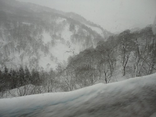 1102oyama1009.jpg