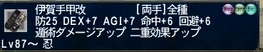 GW-00056_20101231151102.jpg
