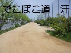 PAP_0054.jpg