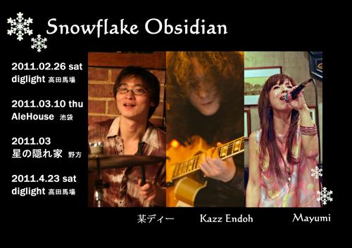 snowflake_obsidian.jpg