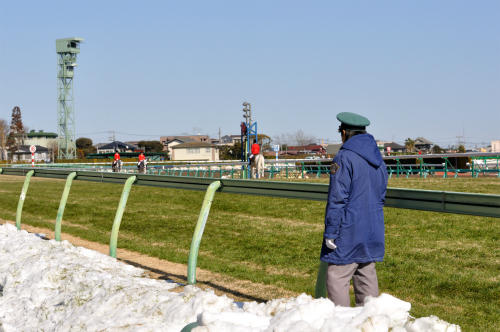 中山競馬場(冬)