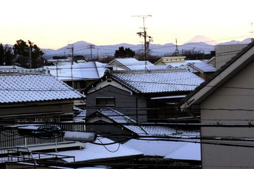 20110118_3.jpg