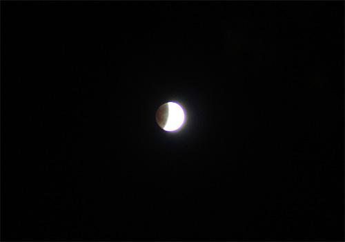 20111211_1.jpg