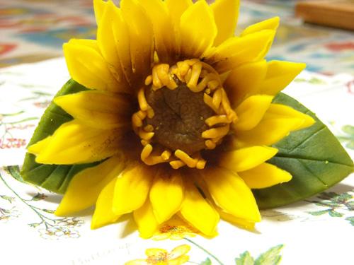 20120110_13.jpg