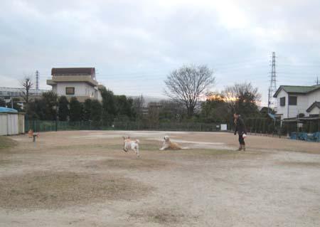 20101219_6.jpg