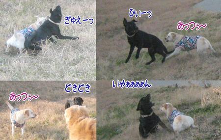 20110104_91.jpg