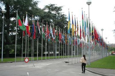 the famous flags outside UN building