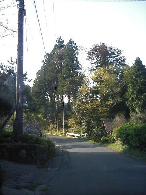yamamichi0430.jpg