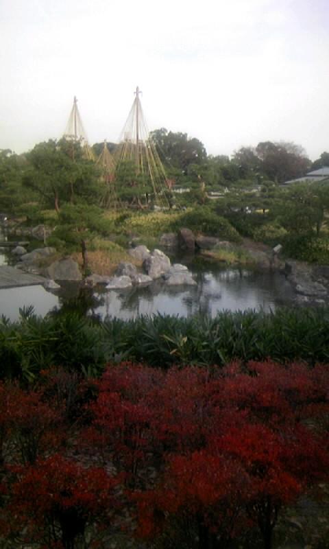 101130_140804白鳥庭園