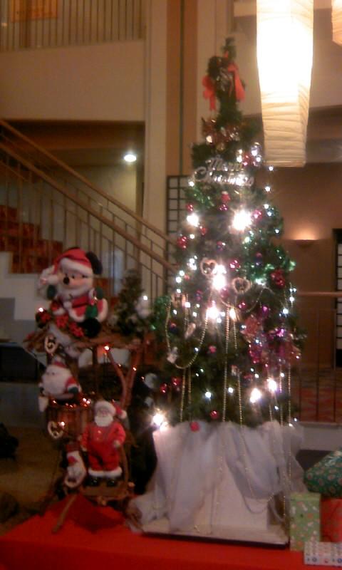 101204_071326ホテルのクリスマスツリー