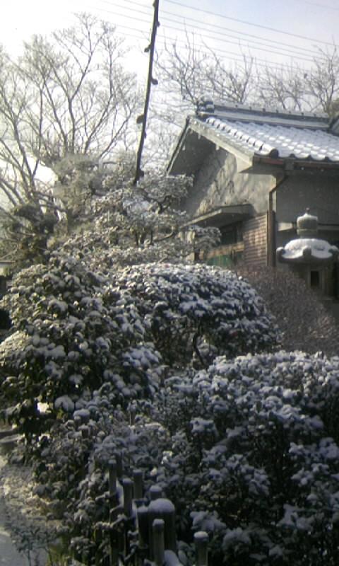 110116_094505庭の雪