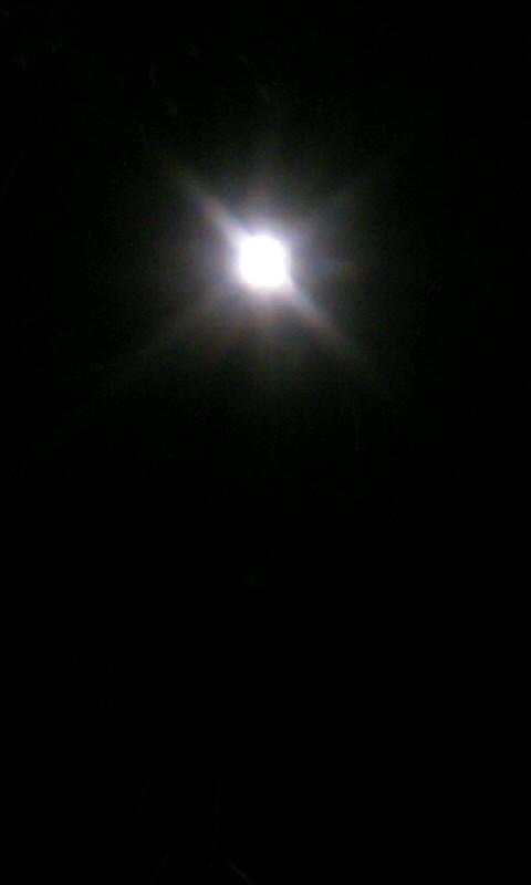 110119_221411お月様