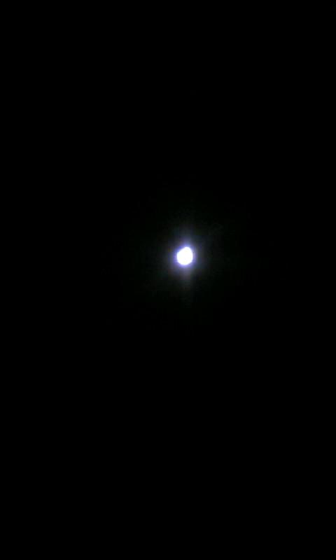 110212_203413昨夜の月