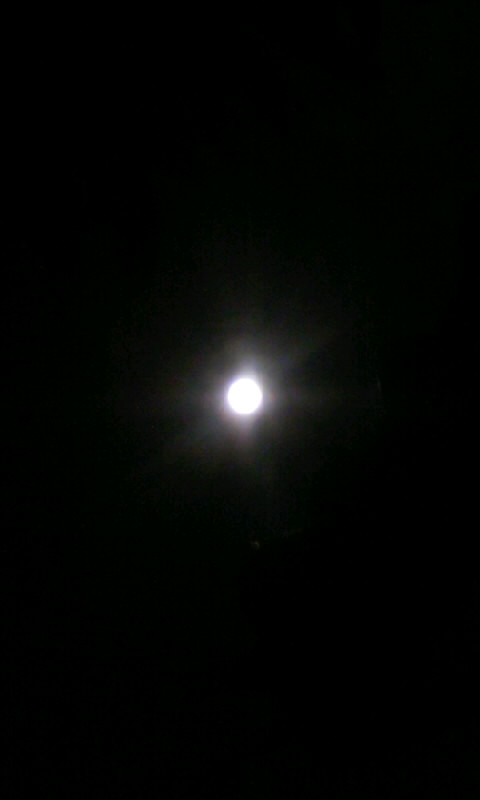 110218_205855満月