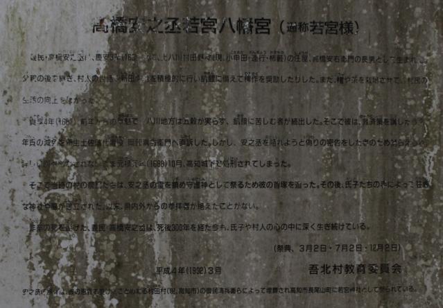 IMG_0538kikokio989