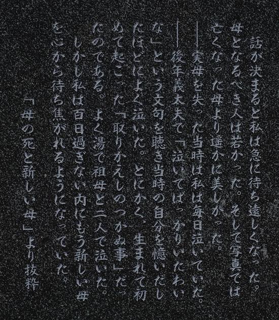 11年10月17日 (36)