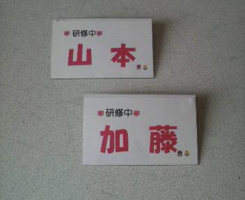 2010040612520001.jpg