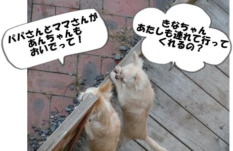 23-2-6あんきな061