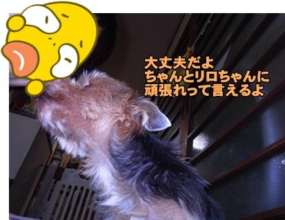23-3-24あんきな072