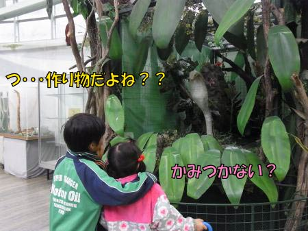 jp-2-1.jpg