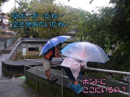 jp-5-1.jpg
