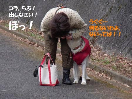 syou-3.jpg