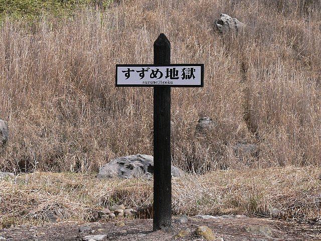 P1200415-1.jpg